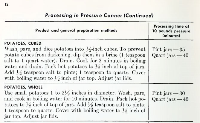 fruit canning process
