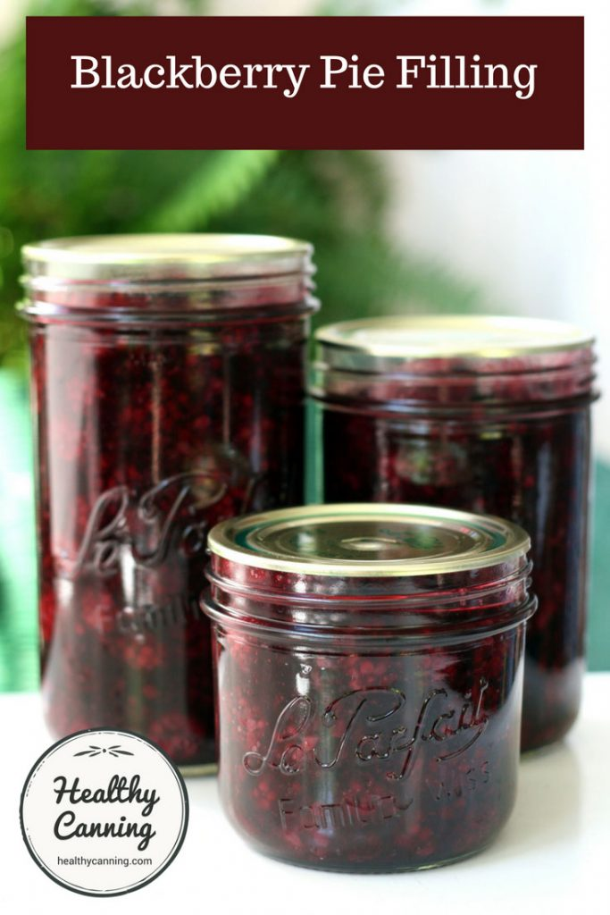 blackberry-pie-filling-pn1