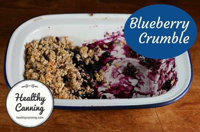 Blueberry Crumble 1002