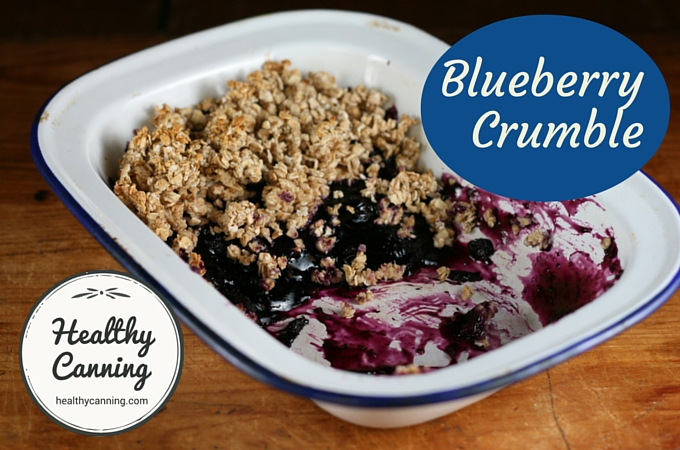 Blueberry Crumble 1003