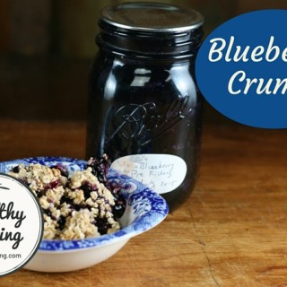 Blueberry Crumble 1005