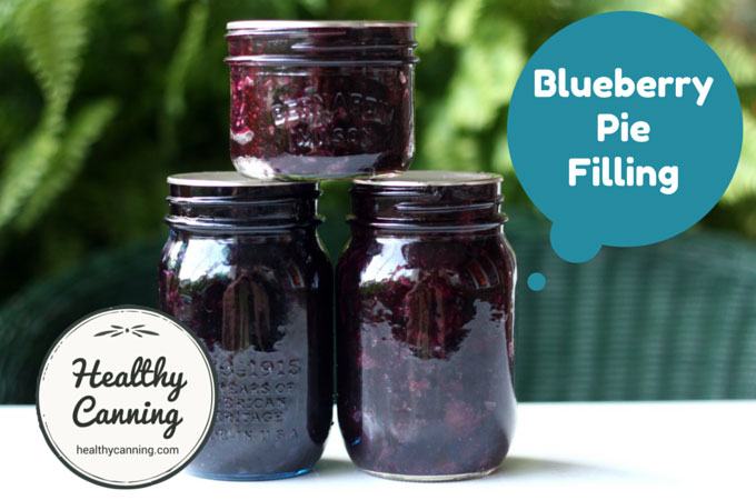Blueberry Pie Filing 003