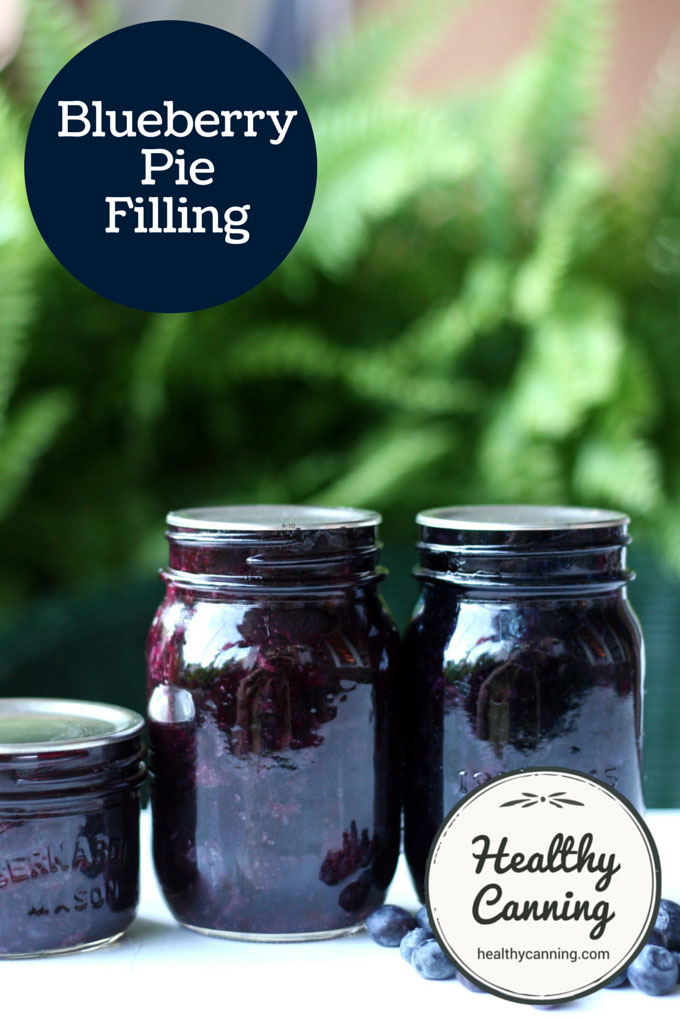 Blueberry Pie Filling 004