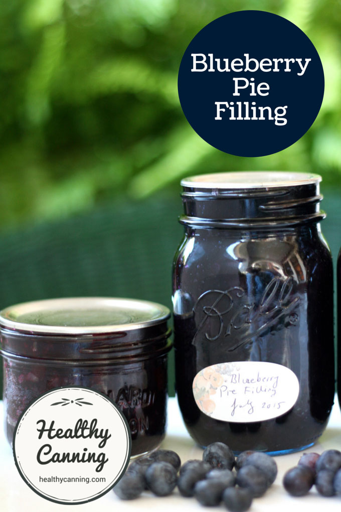 Blueberry Pie Filling 005