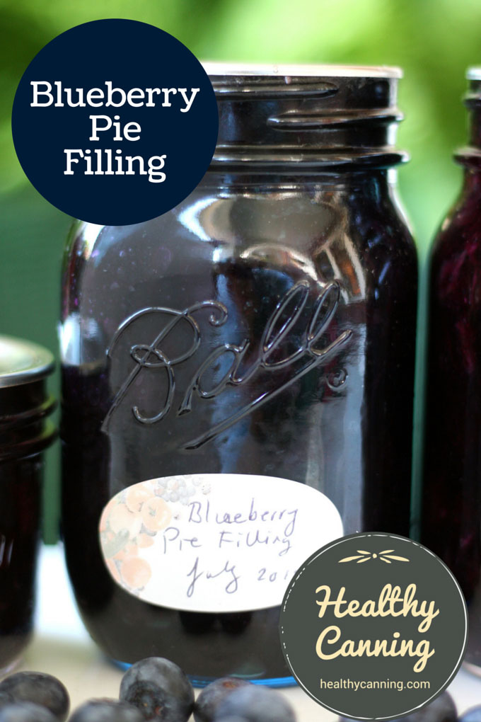 Blueberry Pie Filling 006