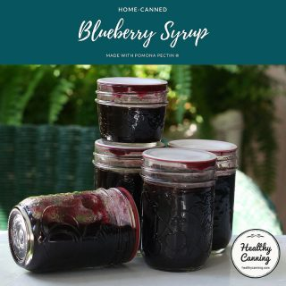 Blueberry Syrup (Pomona)