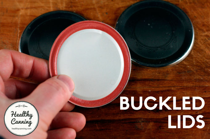 Buckled-Lids-102