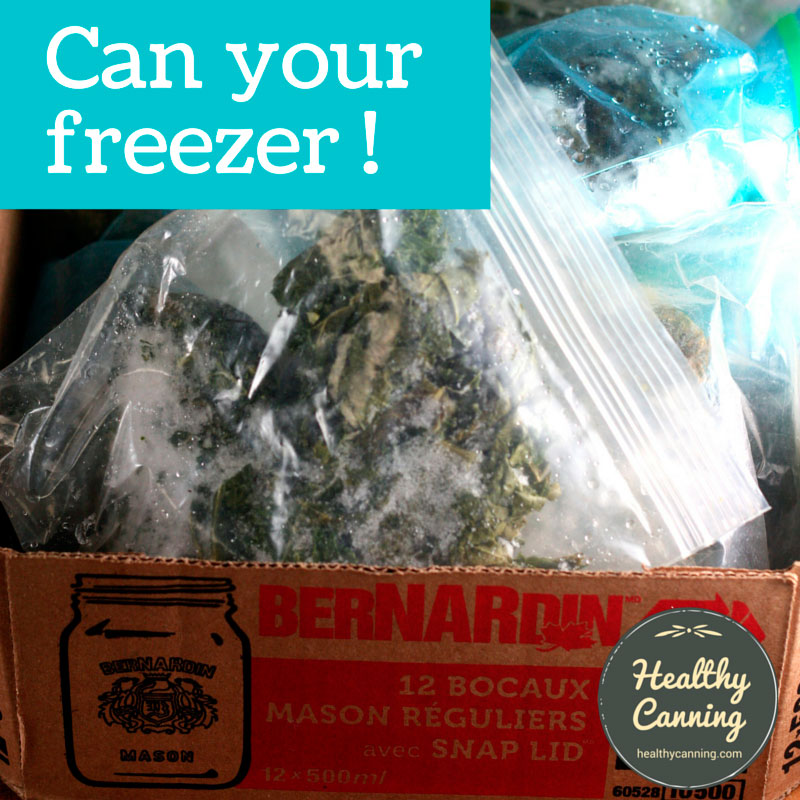 Can your freezer
