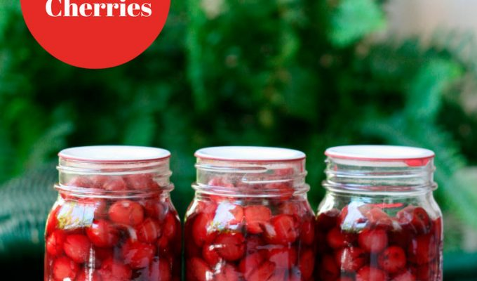 Home canned cherries