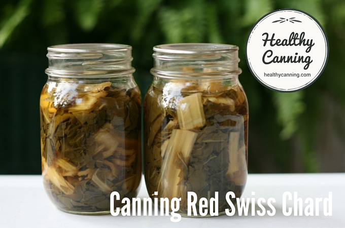 Canning Red Swiss Chard 1005