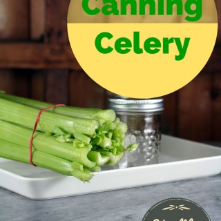 Canning-celery