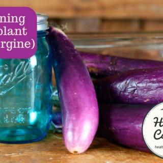 Canning-eggplant-002