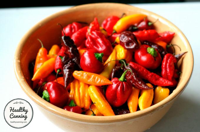 Cayenne-Pepper-Sauce-104