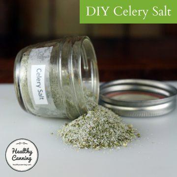 DIY Celery Salt