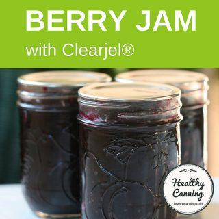 Blueberry Jam (Clearjel)