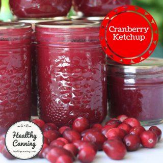 cranberry-ketchup-tn