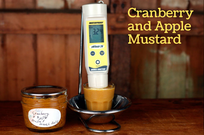 This mustard has a pH of 3.24. Well below the upper safety cut-off of 4.6 pH.