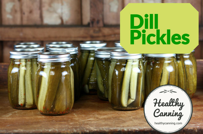 Dill pickles 013