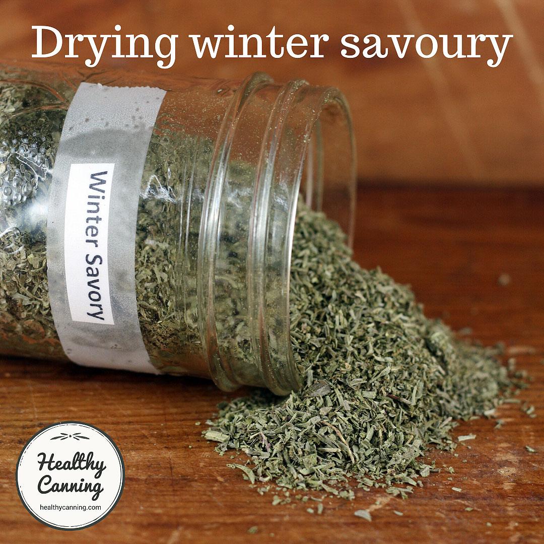 Dried winter savoury