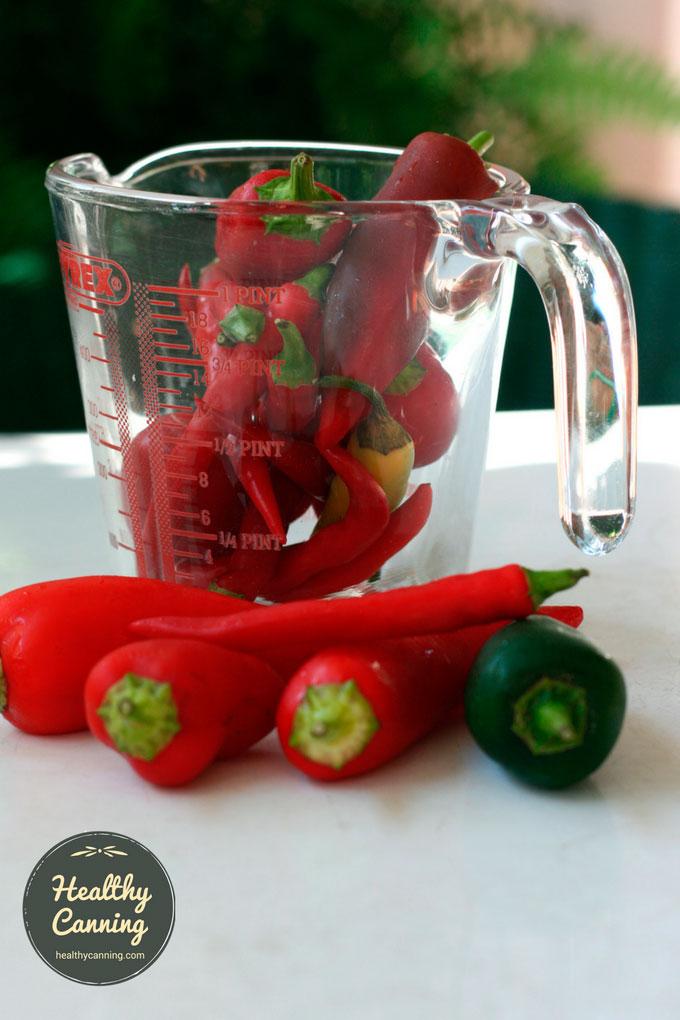 Easy-Hot-Sauce-PN2
