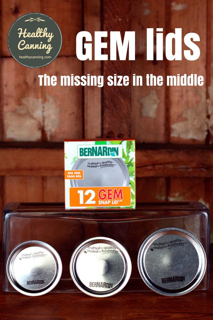 GEM-lids-PN2