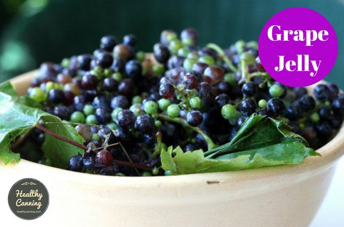 grape-jelly-101