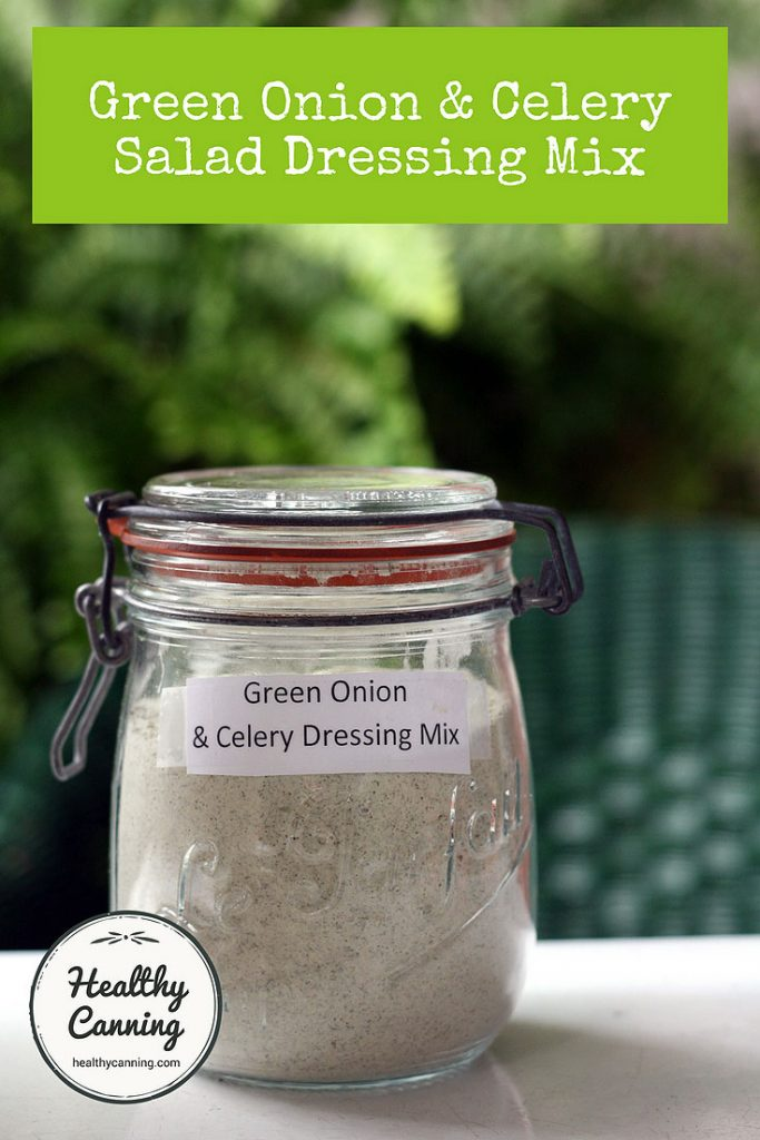 Green Onion And Celery Salad Dressing Mix