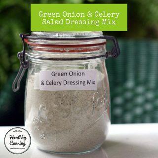 Green Onion & Celery Salad Dressing Mix