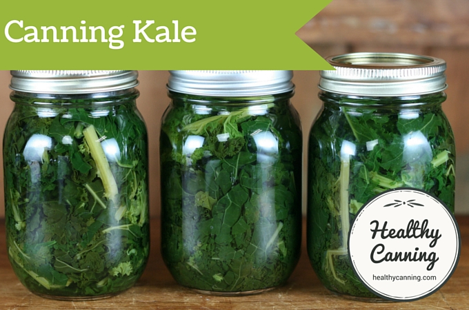 Kale before processing