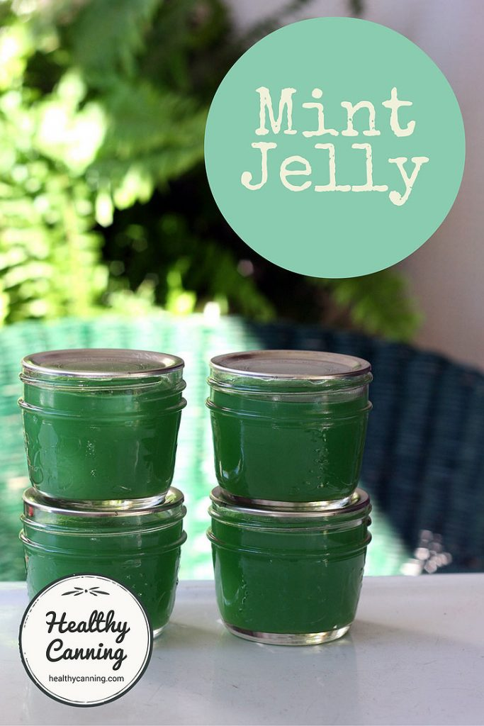 mint-jelly-pn1