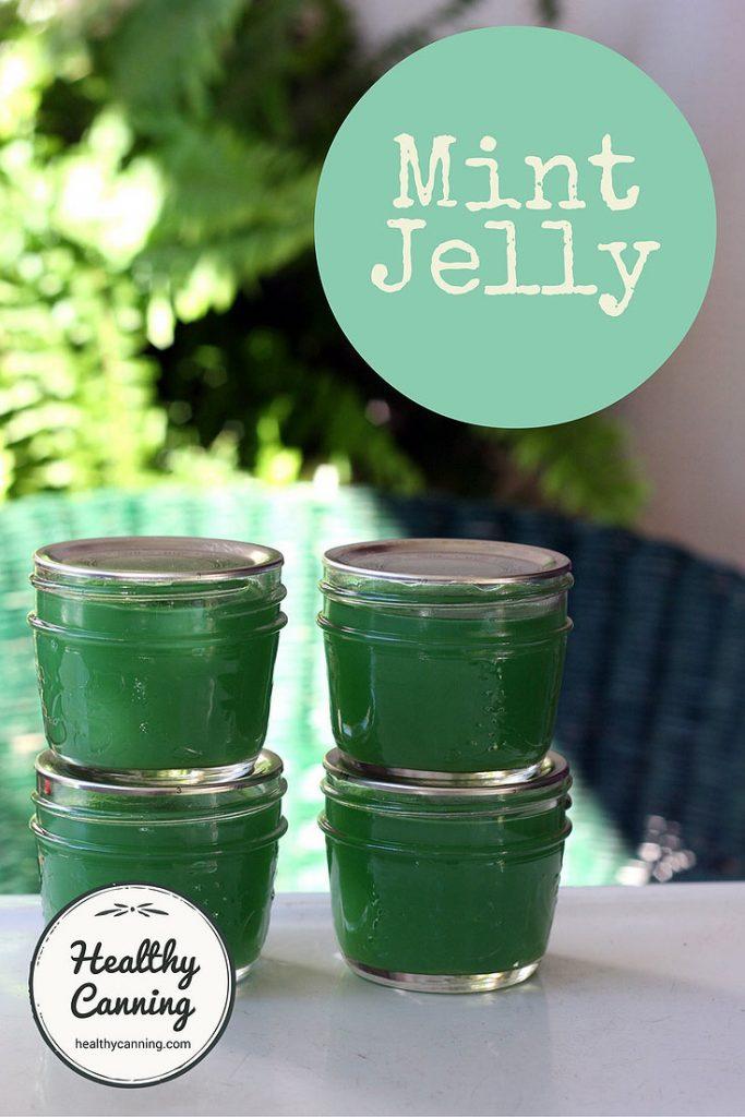 mint-jelly-pn1