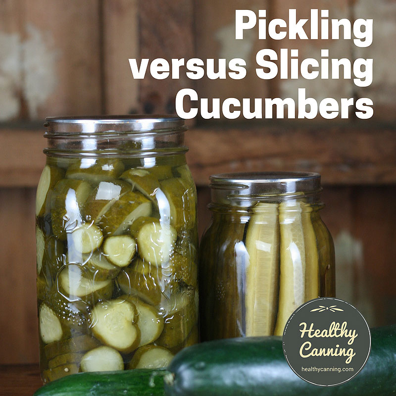 Pickling versus slicing cucumbers