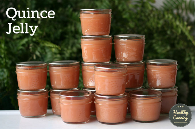 quince-jelly-101