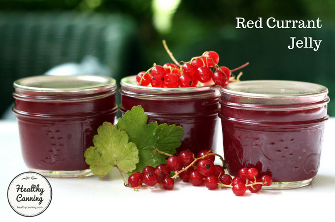 red-currant-jelly-101