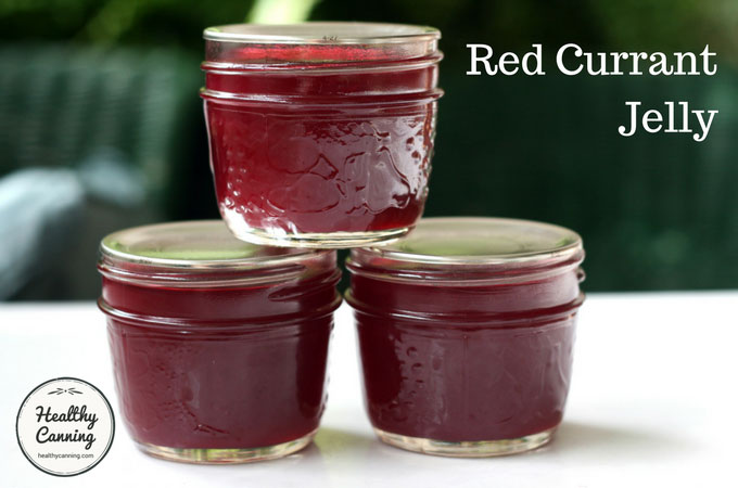 red-currant-jelly-103