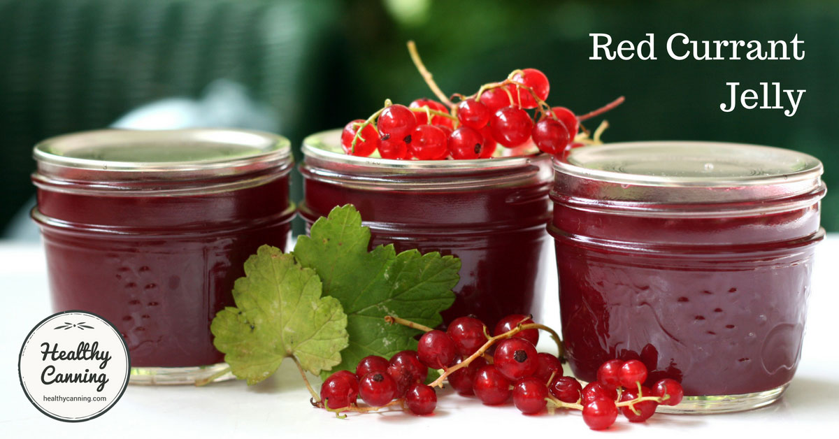 Red Currant Jam Recipe — Dishmaps