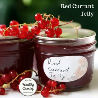red-currant-jelly-tn
