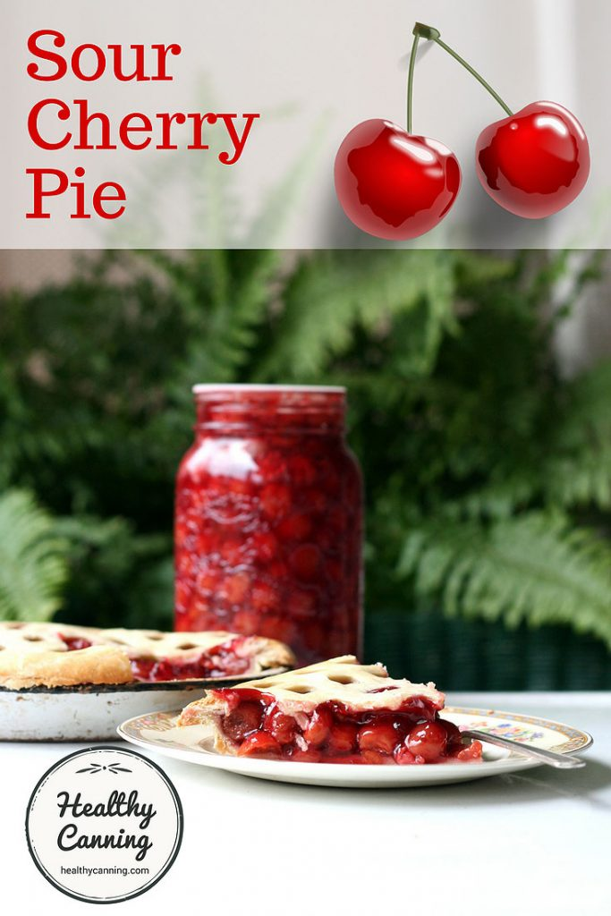 sour-cherry-pie-pn