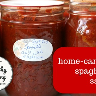Spaghetti Sauce 2004
