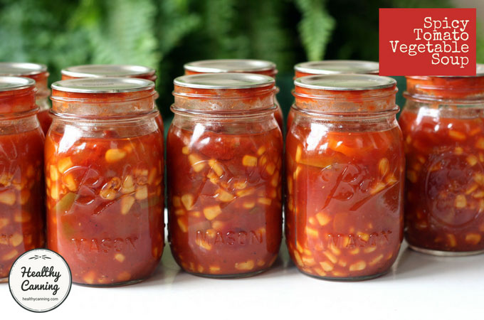 spicy-tomato-vegetable-soup-102