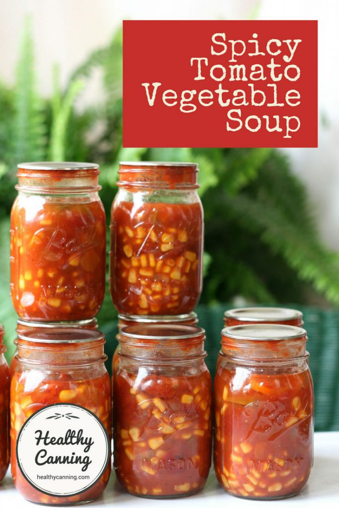 spicy-tomato-vegetable-soup-pn