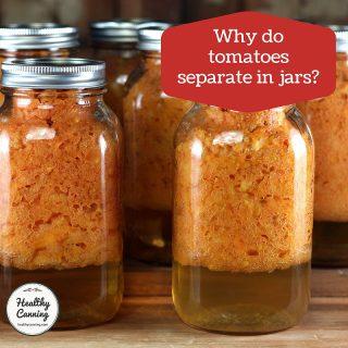 Tomatoes separating in jars