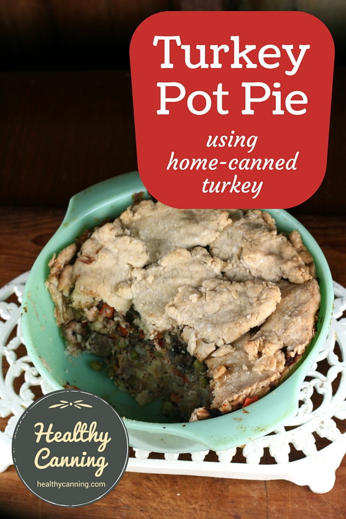 Turkey Pot Pie 2001