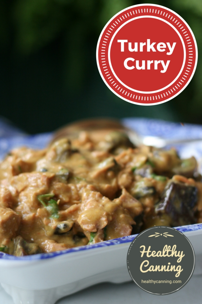 Turkey curry 001