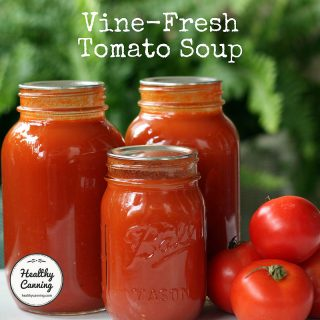 Vine-fresh tomato soup