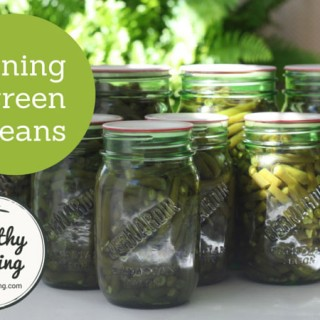 canning-green-beans-205