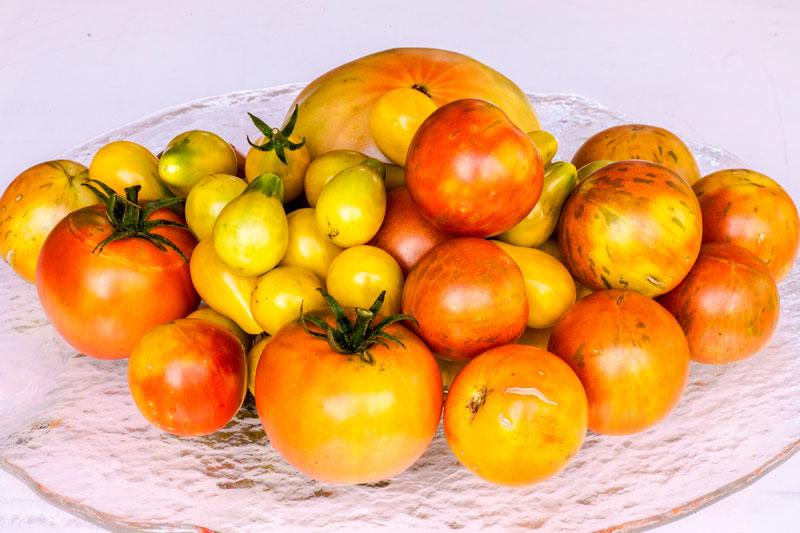 Various colours of tomatoes. Jerry Nettik / Pixabay.com / 2015/ CC0 1.0