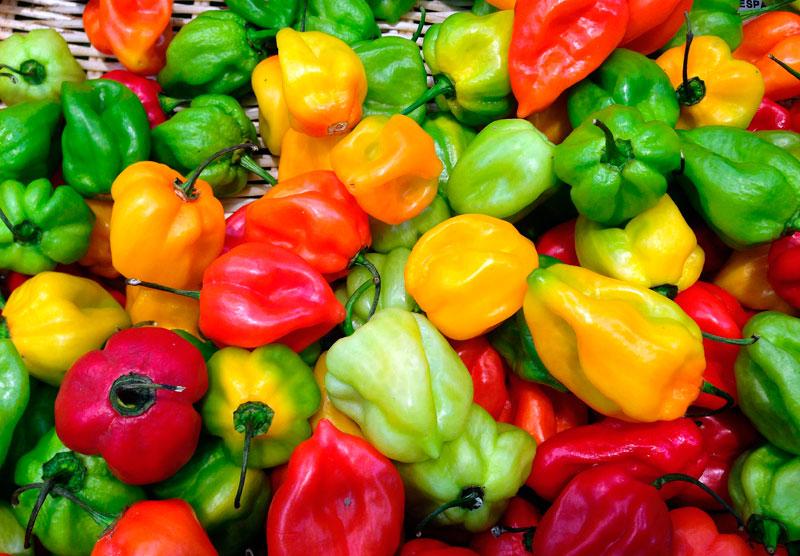 Habenero chlie peppers. jacqueline macou / Pixabay.com / 2015 / CC0 1.0