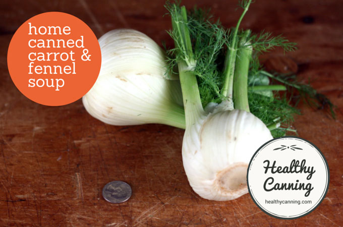 2 small bulbs fennel (discard tops and fronds or reserve for another use)