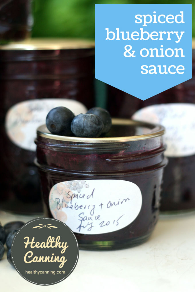 spiced blueberry and onion sauce 001